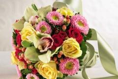 flower 2]
